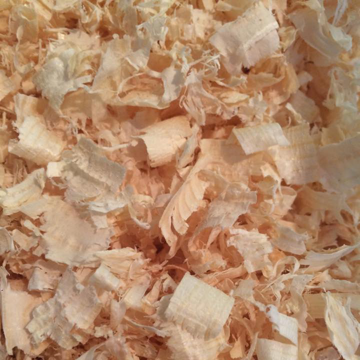 Woodshavings – Holley